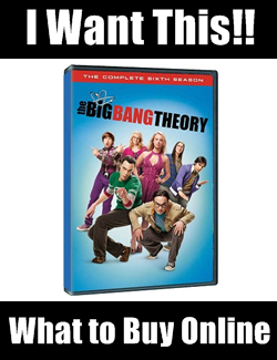 Big Bang Theory Season 6